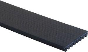 Gates K081264 V-Belt