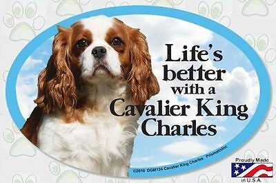 Life/'s Better with a Cavalier King Charles  6x4 Oval Dog Magnet for Cars /& More