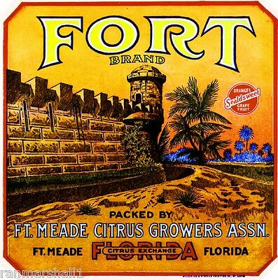Fort Ft. Meade Florida Fort Orange Citrus Fruit Crate Label Art Print