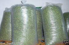 100% Organic Dried Moringa Oleifera Leaf Leaves Tea Fresh from Thailand 10 KG