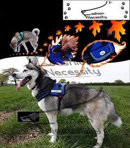 BLAZE-Dog-Reflective-Harness-XS-S-M-L-XL-extra-padded-heavy-duty-Siberian-Husky