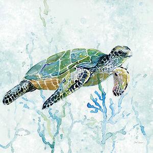 Carol Robinson: Sea Turtle Swim I Keilrahmen-Bil<wbr/>d Leinwand maritim Meerestiere