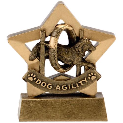 Pet Dog Agility Chiot train Dog show Crufts Trophée Gravé FREE Mini Star award