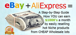 "Aliexpress Dropshipping Book /""Be Your Own Boss/"" Earn Money Online with"