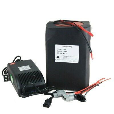 Lithium 48V 28Ah Ebike Battery 1000W Pack High Power Charger Ebike Ion Battery