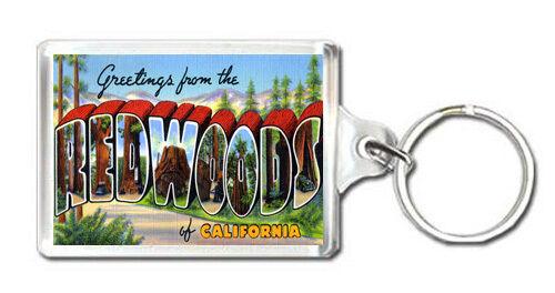 GREETINGS FROM REDWOODS CALIFORNIA KEYRING SOUVENIR LLAVERO