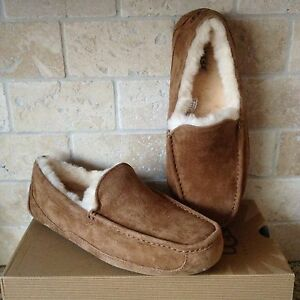 c3c59924434 Details about UGG ASCOT CHESTNUT SUEDE SHEEPSKIN SLIPPERS MOCCASINS SIZE 7  3E WIDE WIDTH MENS