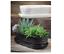 One Long Ceramic Flower Plant Pot 29cm Long