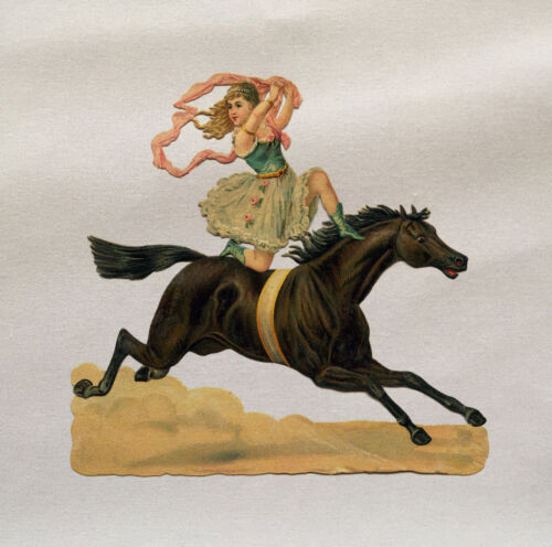Circus Horse acrobat Art Printed On Fabric Panel Make A Cushion Upholstery Craft