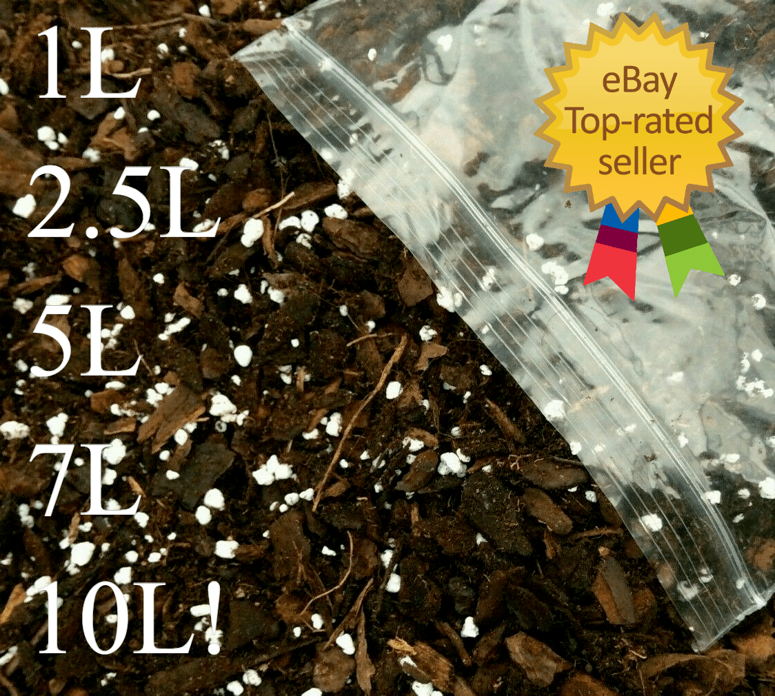 Monstera Soil Mix for Aroids Philodendron Calathea Free Draining Moss Peat Base