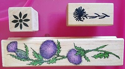 Woodblock Rubber Stamps Art - Hero Arts Three Stamps of Flowers