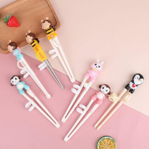 Rag Cubs Learning Training Chopsticks Children Chinese Chopsticks Accessories US