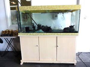 160 gallon glass fish aquarium ebay for Used 300 gallon fish tank for sale