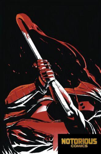 Red Hood Outlaw #27 Foil Cover DC Comics 1st Print EXCELSIOR BIN