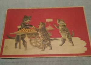 Cats-Kittens-Embossed-Fantasy-Postcard-VTG-Germany-No-176
