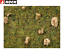 thumbnail 2 - NOCH-08360-Fine-Turf-Grass-Stony-Mountain-Meadow-2-5-MM-20-G-100g-New-Ob