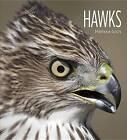 Living Wild: Hawks by Melissa Gish (Paperback / softback, 2015)