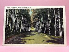 White Birch Rd White Mtns New Hampshire Vtg Postcard Posted 1941 Rumney Depot