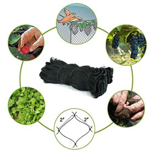 "X-Large 100/'X50/' Anti Bird Agriculture Poultry Game Fish Netting 2/"" Mesh Hole *"
