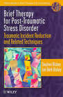Brief Therapy for Post-traumatic Stress Disorder: Traumatic Incident Reduction and Related Techniques by Stephen Bisbey, Lori Beth Bisbey (Paperback, 1998)