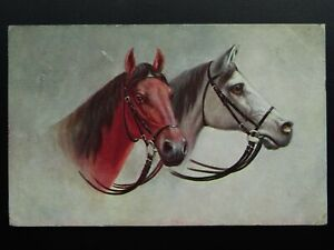Horse-Theme-HORSE-HEAD-PORTRAIT-c1908-Postcard-by-Max-Ettlinger-amp-Co