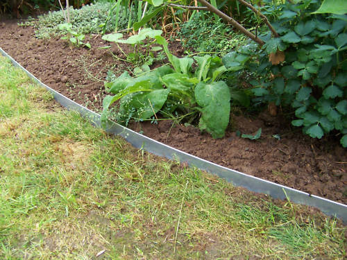 21er Set Rasenkanten Beeteinfassung aus Edelstahlblech 160 mm hoch,25,75m lang