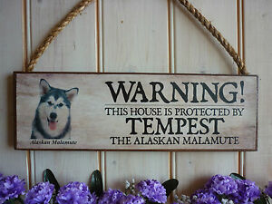 BESPOKE-ALASKAN-MALAMUTE-WARNING-SIGN-YOUR-DOGS-NAME-BEWARE-SIGN-KEEP-OUT-SIGN