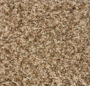 Indoor-Frieze-Shag-Area-Rug-Santa-Barbra-II-Bramble-40-oz-carpet