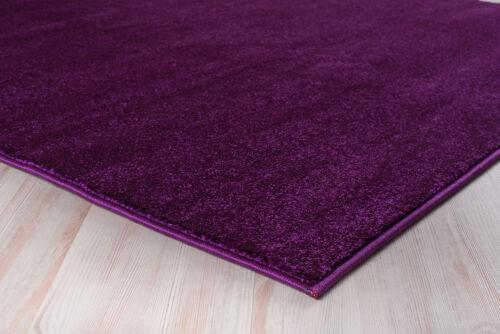 Teppich Kurzflor 2900g//m² Einfarbig Violett Beige Braun Grau 80 120 140 160 200