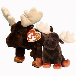 Zeus The Moose Ty Beanie Baby and Buddy Set Retired MWMT Collectible