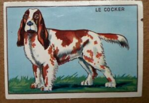 CHROMO-CEMA-LE-COCKER-3142-DOG-HOND-CHIEN-PERRO