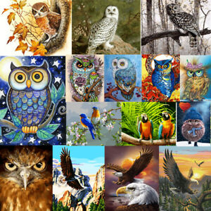 Owl-Animal-DIY-Paint-By-Number-Acrylic-Oil-Painting-Art-Wall-Home-Decor-Scenery
