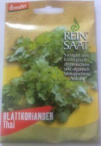 Thai-Blattkoriander-Saatgut-Samen-Demeter-aus-biologischem-Anbau
