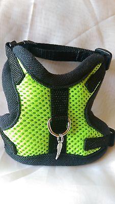 Hundegeschirr Xs, Softgeschirr, Brustgeschirr, Grün Neon Mesh Halsband, Welpen,