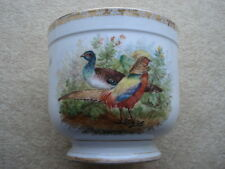 VINTAGE DRESDEN PHEASANTS, BUTTERFLIES & INSECTS PATTERN JARDIANAIRE