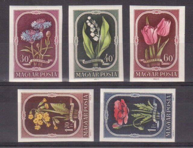 HUNGARY 1951 MINT NH IMPERF. SET #974/78, FLOWERS !!  R
