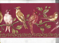 Wallpaper Border Brids On Branches Bird Nature Animal Arrival