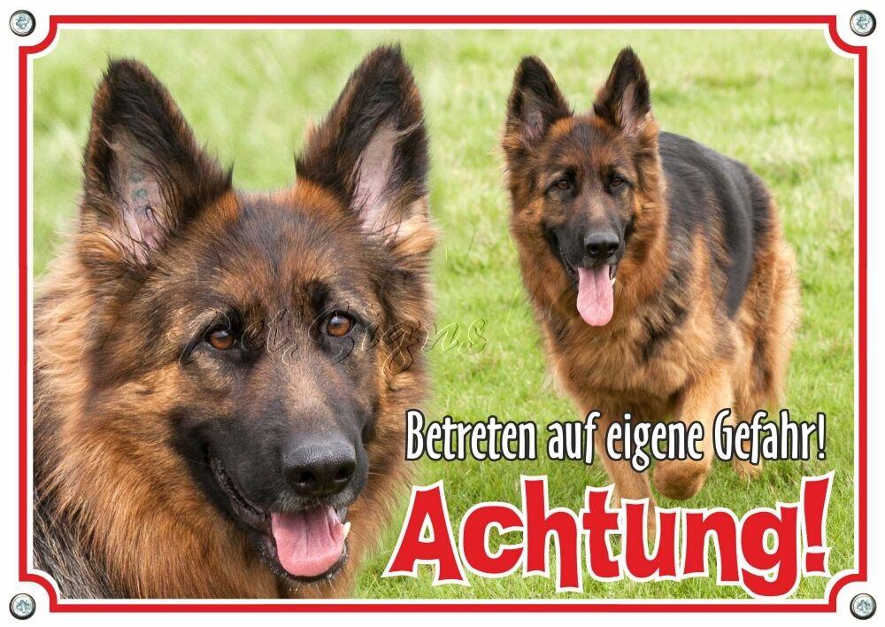 TARGHETTA per cani cane PASTORE-massiccio metallo scudo-qualità TOP-conservati