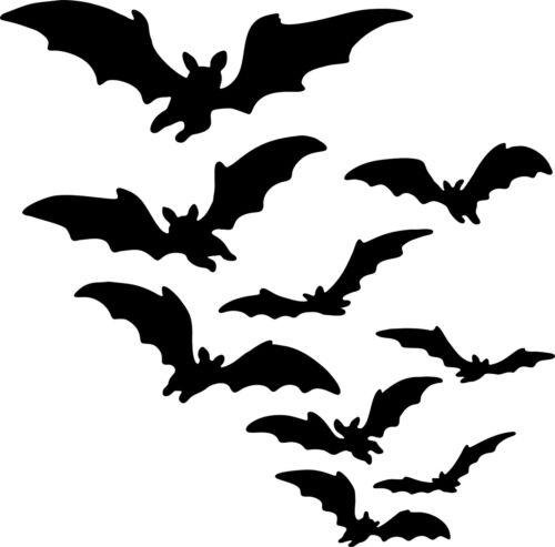 Fledermaus   -Aufkleber -   - Autoaufkleber  -Neu- Fledermäuse