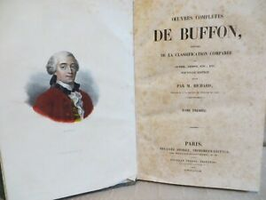 oeuvres-completes-de-Buffon-classification-comparee-Cuvier-Lesson-gravures-1838