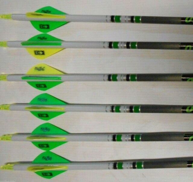 1-Dozen Gold Tip Hunter 340 Arrows with 2-Inch Raptor Vanes
