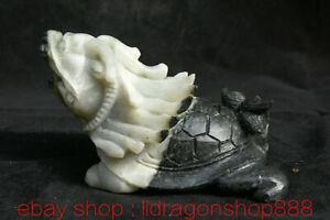 "6.6 ""Naturel Dushan Jade Sculpté Feng Shui Dragon Tortue Tortue Statue Longévité"