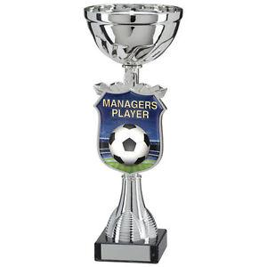 Football-gestionnaires player TITAN Cup, trophée, Award, 210 mm, Gravure Gratuite (TQ15109B)  </span>