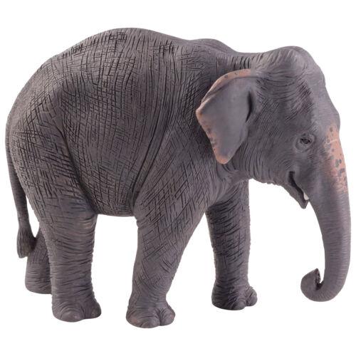 Statuina Animal Planet Elefante Asiatico