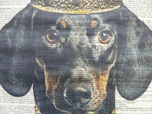 sausage dog Dachshund Print No.609