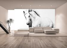 WALLPAPER MURAL PHOTO White horse Mustang GIANT WALL DECOR PAPER Living Room
