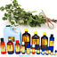 3ml-Essential-Oils-Many-Different-Oils-To-Choose-From-Buy-3-Get-1-Free thumbnail 61