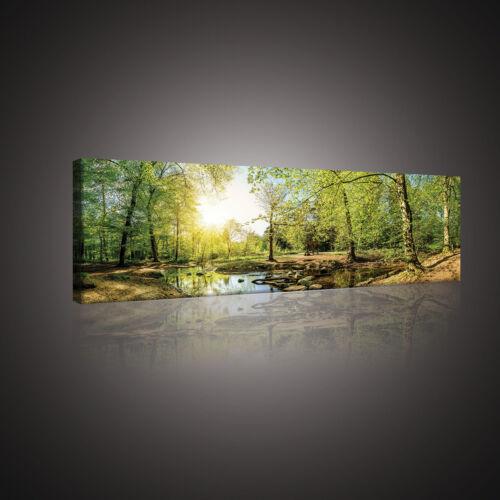 Toile la Fresque toile Forêt Nature Arbre redeviennent soleil eau 3fx10508o3