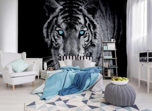 Photo Wallpaper Mural  10202/_P Tiger Tiger Animal Blue Eyes Wildness Gray