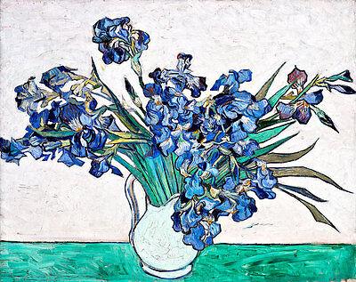 Irises II by Vincent van Gogh A2 High Quality Canvas Print